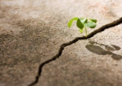 ESTUDOS BÍBLICOSTraga à memória o que te dá esperança